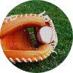 야구&MLB