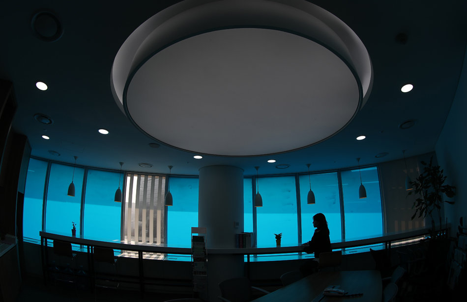 한국의 색 이미지